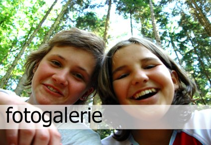 Fotogaleire